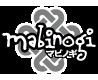 mabinogi 10th ANNIVERSARY