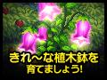 【終了】きれ~な植木鉢を育てましょう!