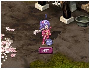 桜花の採集依頼